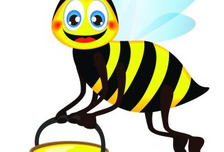 Deep Winter & Preparing For Spring With Bees
