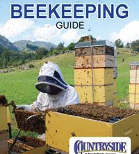 Beekeeping Guide Flip Book