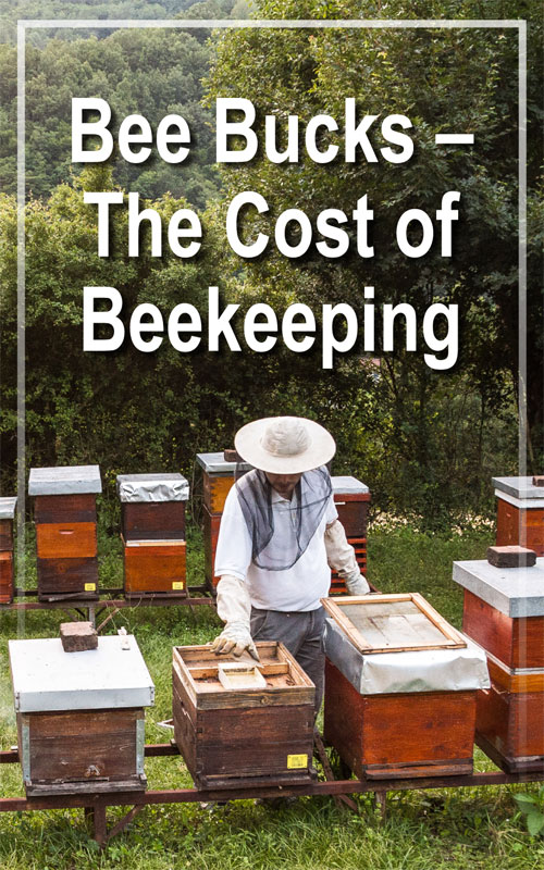 Cost of Beekeeping