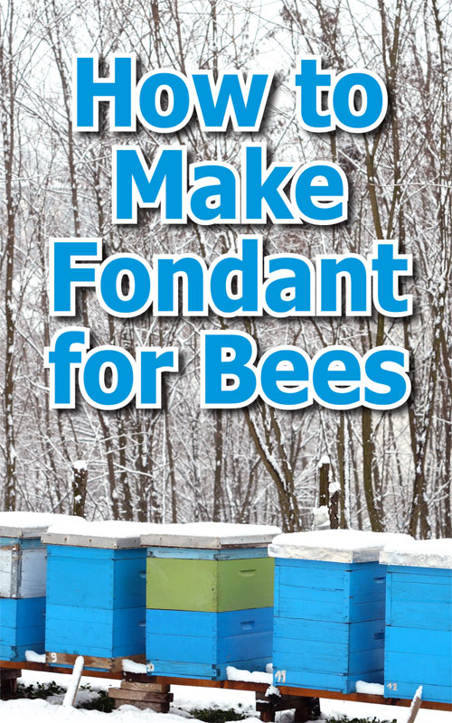 Fondant For Bees