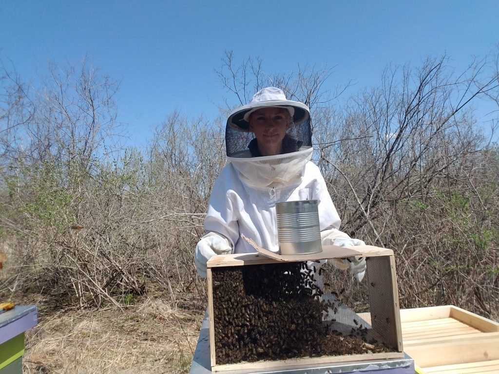 how-to-install-package-bees
