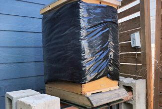 Preparing Honeybees for Winter